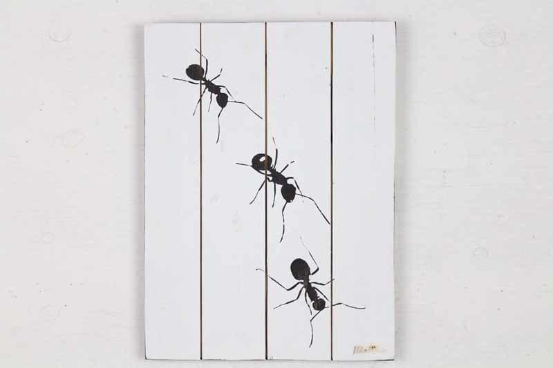 Skilt med motiv af 3 myrer fra Idalund Design. Håndlavet af genbrugstræ. 33x46 cm.